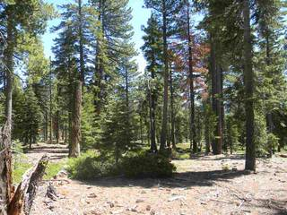 Listing Image 6 for 0 Old County Road, Tahoe City, CA 96145