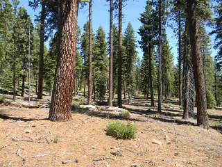 Listing Image 7 for 0 Old County Road, Tahoe City, CA 96145