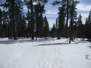 Listing Image 10 for 0 Old County Road, Tahoe City, CA 96145