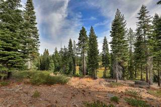 Listing Image 3 for 9332 Nine Bark Road, Truckee, CA 96161