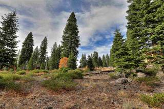 Listing Image 5 for 9332 Nine Bark Road, Truckee, CA 96161