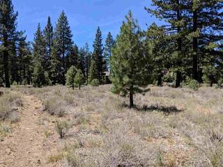 Listing Image 9 for 12593 Caleb Drive, Truckee, CA 89509