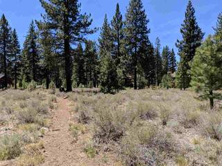 Listing Image 10 for 12593 Caleb Drive, Truckee, CA 89509
