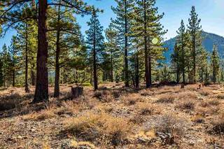 Listing Image 12 for 8155 Valhalla Drive, Truckee, CA 96161