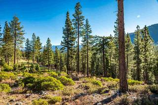 Listing Image 6 for 8155 Valhalla Drive, Truckee, CA 96161