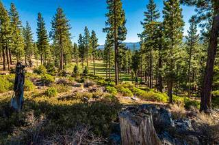 Listing Image 8 for 8155 Valhalla Drive, Truckee, CA 96161
