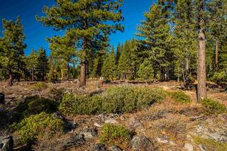 Listing Image 9 for 8155 Valhalla Drive, Truckee, CA 96161