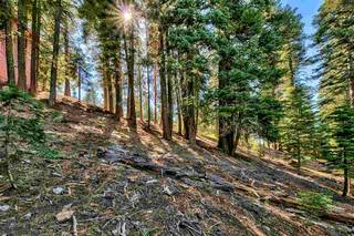 Listing Image 8 for 10672 Mougle Lane, Truckee, CA 96161