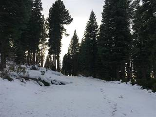 Listing Image 3 for 2325 Overlook Place, Truckee, CA 96161