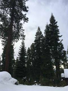 Listing Image 8 for 2325 Overlook Place, Truckee, CA 96161