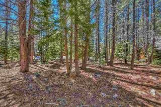 Listing Image 9 for 14654 Davos Drive, Truckee, CA 96161-000