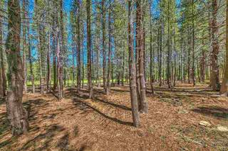 Listing Image 6 for 14668 Davos Drive, Truckee, CA 96161-0000