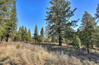 Listing Image 7 for 11291 Ghirard Road, Truckee, CA 96161