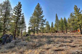 Listing Image 9 for 11291 Ghirard Road, Truckee, CA 96161