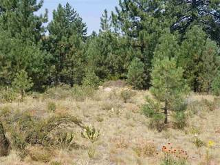 Listing Image 1 for 11883 Old Mill Road, Truckee, CA 96161