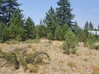 Listing Image 3 for 11883 Old Mill Road, Truckee, CA 96161