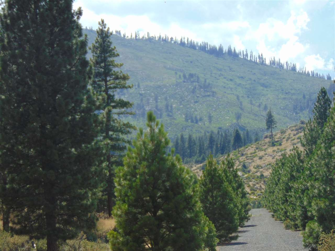 Image for 00 Gold Ranch Road, Verdi, CA 89439