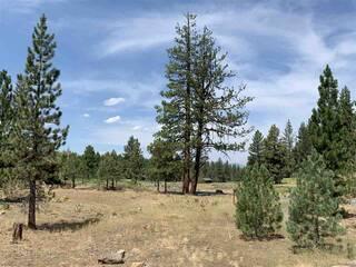 Listing Image 6 for 150 Bob Sherman, Truckee, CA 96161