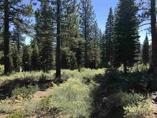 Listing Image 16 for 10625 Carson Range Road, Truckee, CA 96161