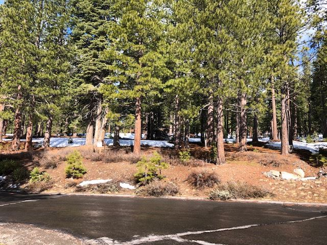Image for 11436 China Camp Road, Truckee, CA 96161