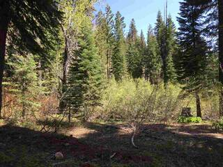 Listing Image 11 for 1378 Mineral Springs Trail, Alpine Meadows, CA 96146