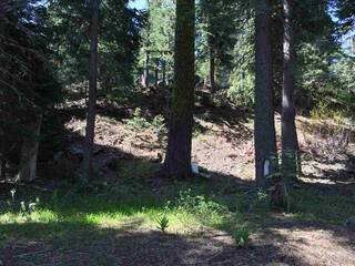 Listing Image 9 for 1378 Mineral Springs Trail, Alpine Meadows, CA 96146