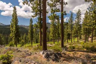 Listing Image 13 for 8101 Valhalla Drive, Truckee, CA 96161