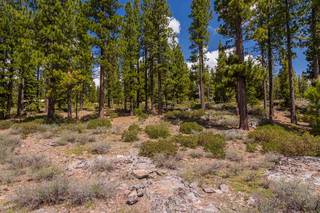Listing Image 9 for 8101 Valhalla Drive, Truckee, CA 96161