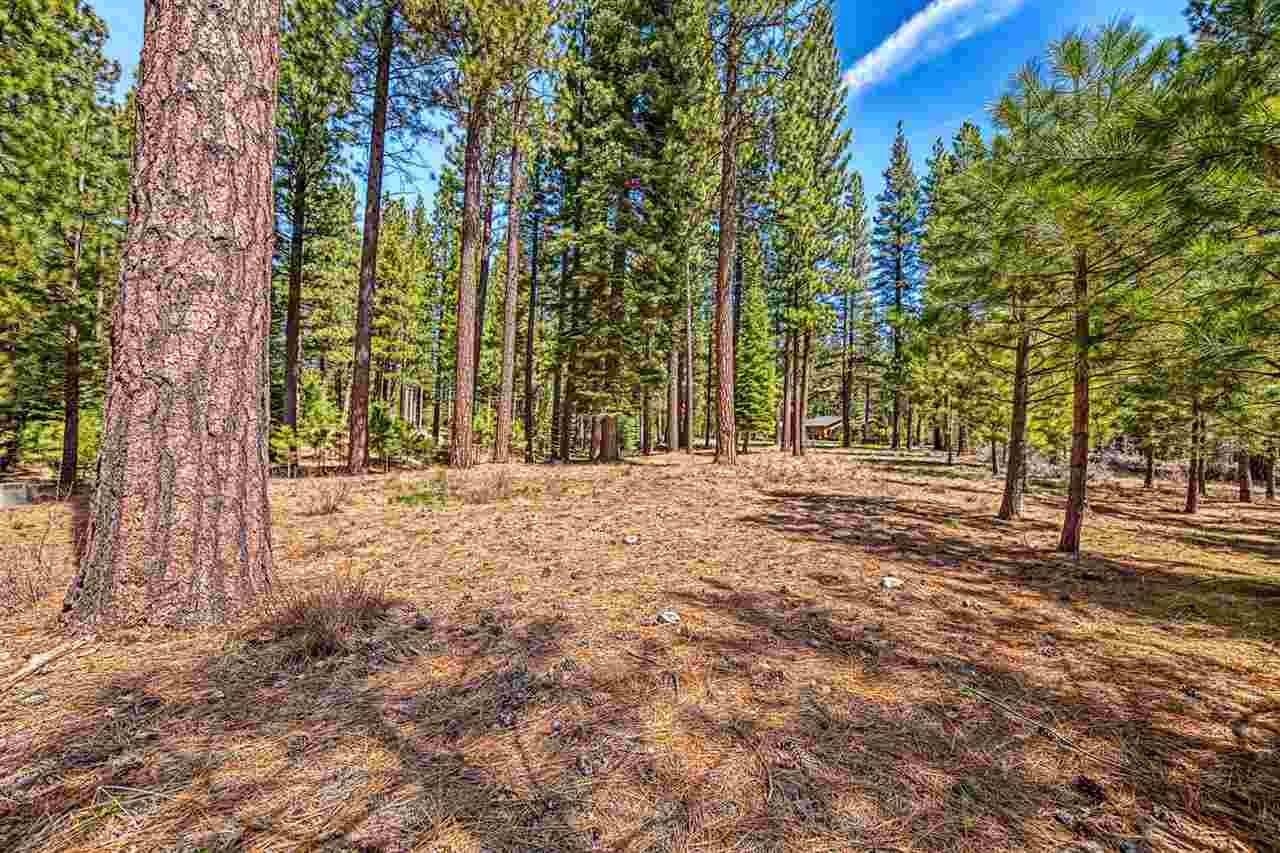 Image for 148 Black Bear Trail, Clio, CA 96106