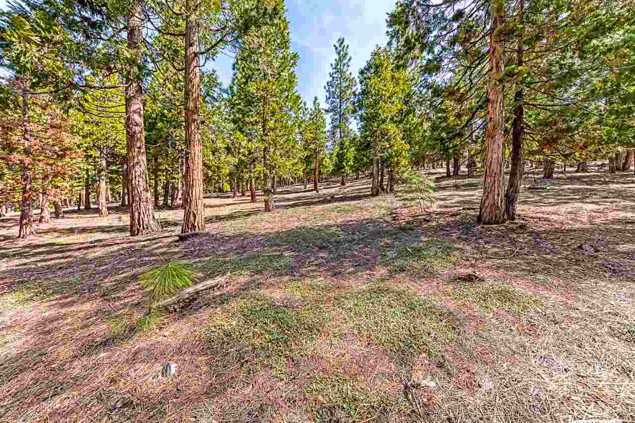 Image for 696 Blacktail Ridge, Portola, CA 96122