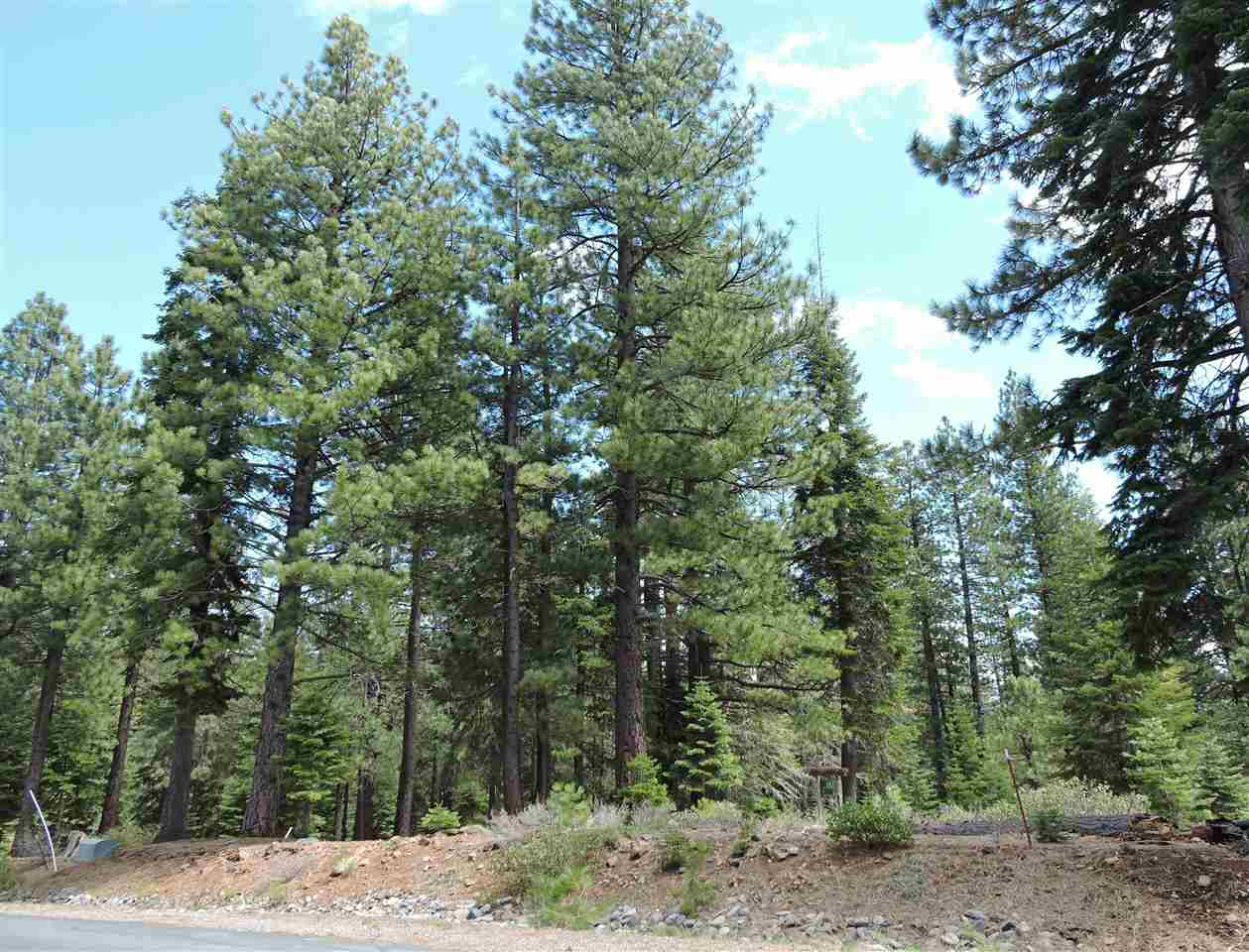 Image for 11853 Saddleback Drive, Truckee, CA 96161