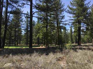 Listing Image 9 for 12506 Caleb Drive, Truckee, CA 96161