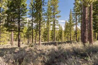 Listing Image 2 for 8125 Villandry Drive, Truckee, CA 96161