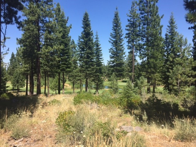 Image for 9333 Heartwood Drive, Truckee, CA 96161