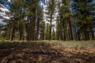 Listing Image 7 for 12825 Lookout Loop, Truckee, CA 96161