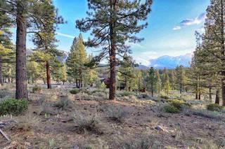 Listing Image 20 for 658 & 670 Joseph Bernard, Truckee, CA 96161