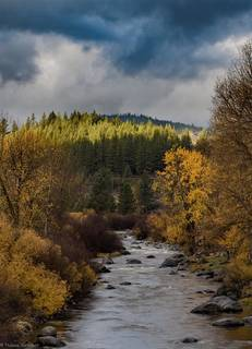 Listing Image 18 for 10049 Southeast River Street, Truckee, CA 96160-0000
