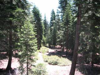 Listing Image 11 for 11612 Lockwood Drive, Truckee, CA 96161
