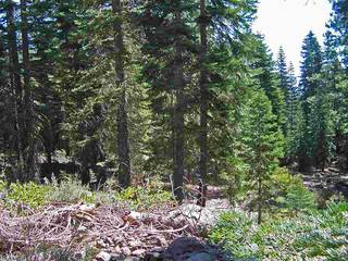 Listing Image 4 for 11612 Lockwood Drive, Truckee, CA 96161