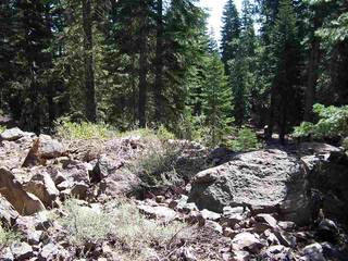 Listing Image 3 for 11625 Lockwood Drive, Truckee, CA 96161