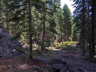 Listing Image 5 for 11625 Lockwood Drive, Truckee, CA 96161