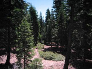 Listing Image 6 for 11625 Lockwood Drive, Truckee, CA 96161