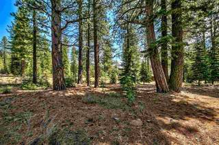 Listing Image 11 for 12595 Granite Drive, Truckee, CA 96161