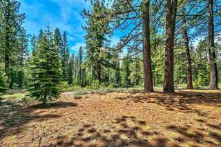 Listing Image 15 for 12595 Granite Drive, Truckee, CA 96161