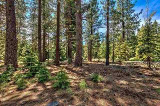 Listing Image 10 for 12595 Granite Drive, Truckee, CA 96161