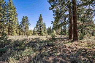 Listing Image 16 for 12593 Caleb Drive, Truckee, CA 96161-9999
