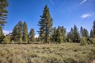 Listing Image 18 for 12593 Caleb Drive, Truckee, CA 96161-9999