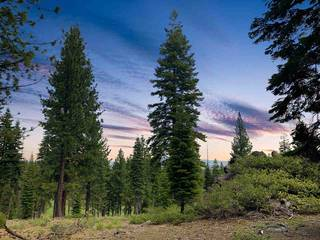 Listing Image 4 for 9344 Nine Bark Road, Truckee, CA 96161