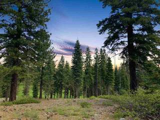 Listing Image 6 for 9344 Nine Bark Road, Truckee, CA 96161
