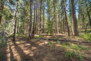 Listing Image 17 for 12160 Sierra Drive, Truckee, CA 96161